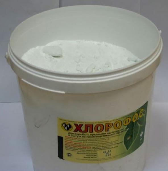Хлорофос - популярное средство для борьбы с клопами