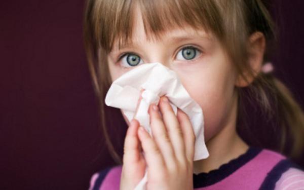 Первичные проявления аллергии на пылевого клеща - это кашель, заложенность носа и покраснение глаз
