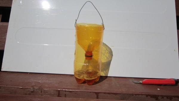 Ловушка для ос из пластиковой бутылки