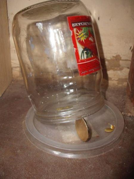 Крысоловка из стеклянной банки и монетки