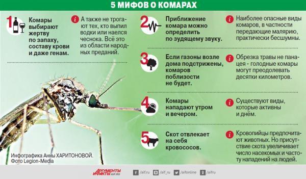 Мифы о комарах