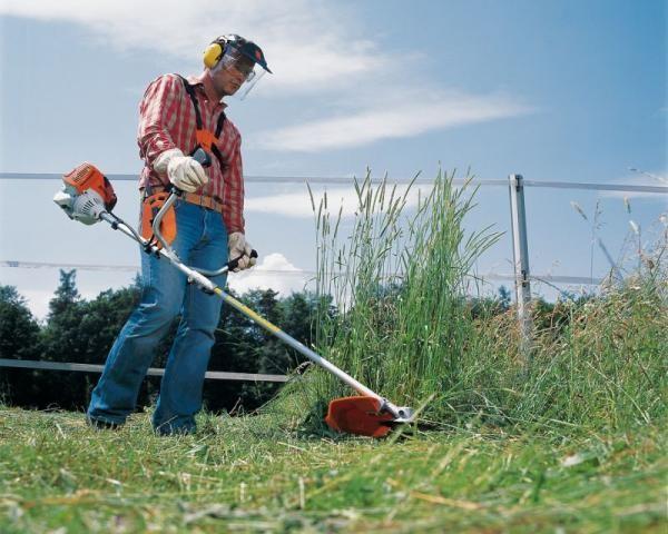 Излюбленное место обитания клещей - высокая трава, поэтому периодически нужно ухаживать за своим участком