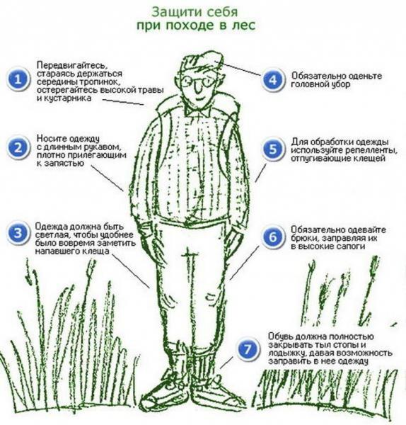 Как одеться, чтобы свести риск укуса насекомого к минимуму