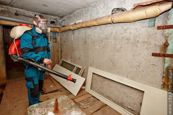Жителям многоквартирных домов при обнаружении блох рекомендуется обработать подвал - для этого лучше обратиться к специалистам