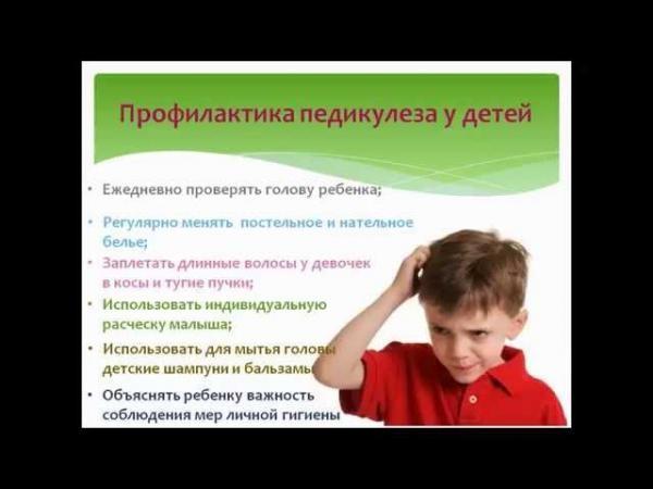 Профилактика педикулеза
