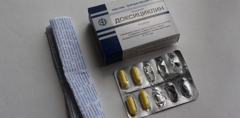 Доксициклин при укусе клеща