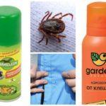 Как используются акарициды против клещей
