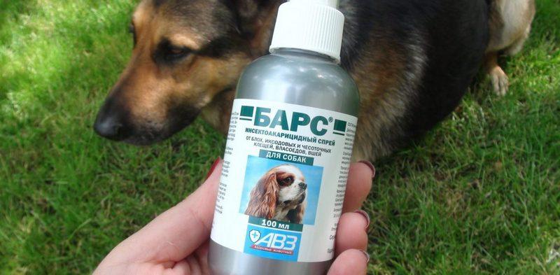 средство от блох для собак
